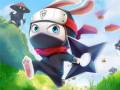 游戏 Ninja Rabbit